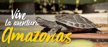 ¡Vive la verdadera aventura en el amazonas colombiano, conociendo lo mejor de los tours que tenemos para ti!